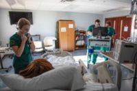 Nursing Plans 50th Anniversary Alumni Events